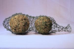 """CAUGHT, 4 x 14 x 5"""", wool, lichen, wire; handfelted, crocheted. 2012"""
